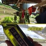 【信州小川村】澄んでるえごま油100g3本セット送料込み