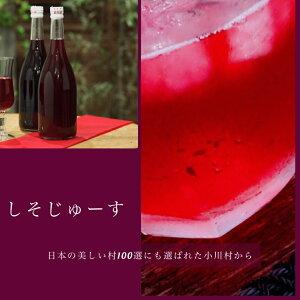 ギフト 家庭用 自宅用 しそジュース 農薬不使用 信州 小川村 シソ 紫蘇 ジュース 澄んでる しそ じゅーす 2本 セット