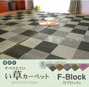 純国産い草花ござカーペット 「Fブロック」 江戸間1畳(約87×174...