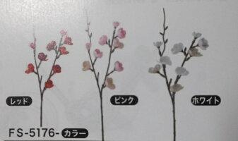 お正月【葉牡丹(中)白】