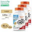 小林製薬 コエンザイムQ10 60粒入(約30日分)小林製薬の栄養補助食品