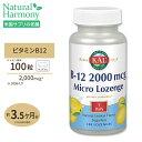 ビタミンB12 トローチ 2000mcg 100粒 KAL(カル) その1