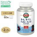 ビタミンB6 B12&葉酸トローチ(ホモシステインバスター) 60粒 KAL【葉酸特集】