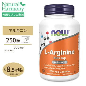 L-アルギニン 500mg 250粒 NOW Foods(ナウフーズ)
