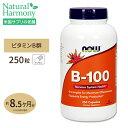 送料無料 [お得サイズ]ビタミンB-100 250粒 約8ヶ...