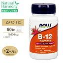 ビタミンB-12 5000mcg 60粒 NOW Foods(ナウフーズ) 1