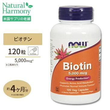 ビオチン(ビタミンH) 5000mcg 120粒 《120日分》NOW Foods(ナウフーズ)