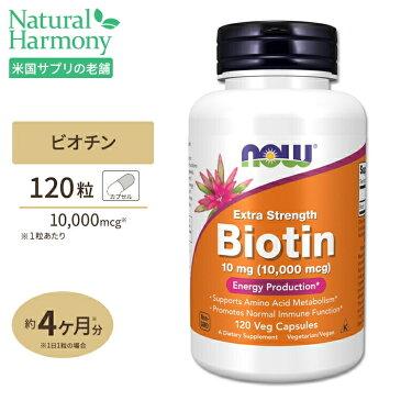 ビオチン 10mg(10000mcg)120粒《120日分》 NOW Foods(ナウフーズ) 【送料無料】 カプセル ビタミン ビタミンB群 スキンケア ヘアケア 肌 髪 栄養補助 サプリメント サプリ