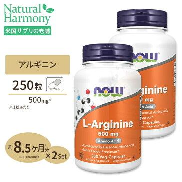 [2個セット]L-アルギニン 500mg 250粒 NOW Foods(ナウフーズ)