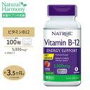 ビタミンB-12[すぐ溶けるチュワブル]5000mcg 100粒(ストロベリー味)サ プリメント サプリ ビタミンB12 now ナウ