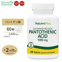 パントテン酸 タイムリリース 1000mg 60粒 [2個セット]ダイエット 健康 サプリメント 健康サプリ ビタミン類 パントテン酸配合