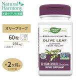 オリーブリーフエキス 12%オレウロペイン 60粒 サプリメント サプリ ポリフェノール Nature's way ネイチャーズウェイ