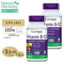 [2個セット]ビタミンB-12[すぐ溶けるチュワブル]5000mcg 100粒(ストロベリー味) その1