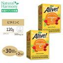 [2個セット]オーガニック ビタミンC パウダー 120g 健康 ビタミン類 ビタミンC配合 送料無料