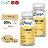 [2個セット]ナイアシン(ビタミンB3) 500mg 100粒