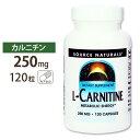 カルニチン サプリメント L-カルニチン 250mg 120粒 サプリメント サプリ ダイエットサプリ カルニチン配合 Lカルニチン お得サイズ Source Natural