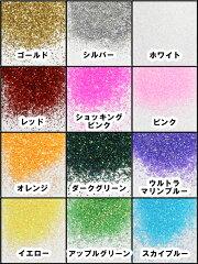 【普通郵便送料無料!】ラメパウダー