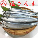 【北海道 根室 塩さんま 10尾】秋刀魚 汐さんま サンマ ...