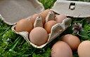 紙包装 蓮ヶ峯農場の平飼いたまご 24個入 平飼い卵 オーガニック 有機 非遺伝子組み換え 自家配合 たまご 平飼い 卵 純国産鶏 もみじの平飼い卵 エコ 京都奥丹波