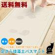 【送料無料】珪藻土バスマット 60×40cm ネコ 猫 さらさら 速乾 お風呂 バス バスマット 吸水 カビ防止 快適 天然素材 足拭き 新築祝い 引越し祝い