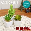 【送料無料】フェイクグリーン 多肉植物 3個セット フェイクグリーン