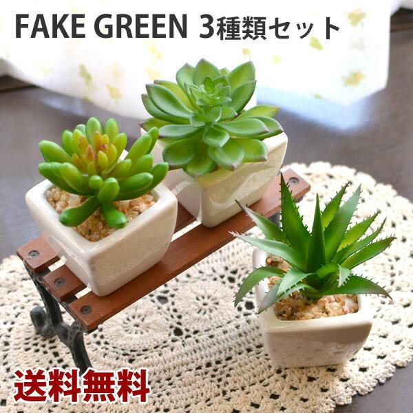 【送料無料】観葉植物Lサイズ スクエア 3個セット 多肉植物 フェイクグリーン  フェイクグリーン 観葉植物 造花 インテリア フェイクグリーン フェイクグリーン フェイクグリーン