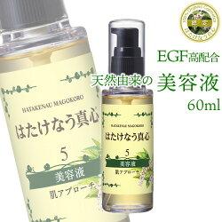 egf美容液5番60ml化粧品EGF配合美容液ニキビ跡吹き出物目元しみしわ天然UV対策紫外線顔ダニ敏感肌ターンオーバーニキビヒトオリゴペプチド-1エイジングケア化粧品
