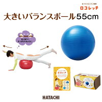 ロコレッチ/大きいバランスボール55cm/HATACHI