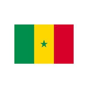 旗 外国旗 オーダー セネガル H120×W180cm テトロンポンジ製 Senegal 旗 フラッグ 160か国対応