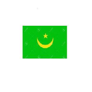 オーダー 外国旗 モーリタニア H70×W105cm テトロンポンジ製 Mauritania 旗 フラッグ FLAG [送料無料]NB 160か国対応