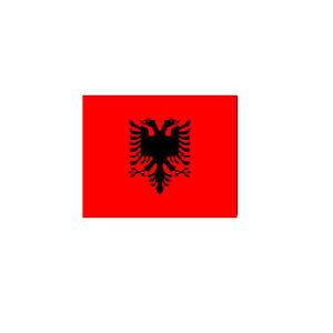 旗 オーダー 外国旗 アルバニア H140×W210cm テトロンポンジ製 Albania フラッグ 旗 160国対応