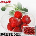 福岡県産冷凍いちご(あまおう)400g 無添加( 冷凍 いち