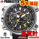 シチズン プロマスター メンズ エコドライブ ソーラー スーパーチタニウム チタン PROMASTER BN4021-02E BN402102E 腕時計