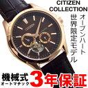シチズン オートマチック 【限定品】 自動巻 機械式 メンズ 腕時計 CITIZEN NP1012-05X 【あす楽対応】