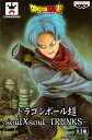 Dbs-soul-trunks