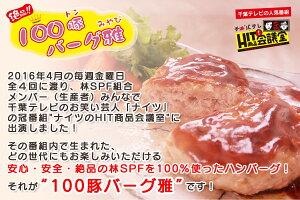 100豚バーグ雅-メインイメージ-