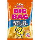 ポテトチップス ビッグバッグ うすしお味 【170g×12個...