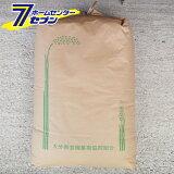 新米 ヒノヒカリ 玄米 30kg 令和元年産 [九州 大分県産 ひのひかり 30kg 米 お米 うるち米]【キャッシュレス5%還元】