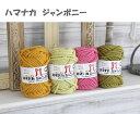 毛糸 超極太 ハマナカ ジャンボニー 日本製 アクリル毛糸 アクリル100% 手編み 編み物 手芸 ハンドメイド 手作り アクリルたわし 帽子 マフラー