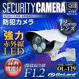 防犯カメラ sdカード録画 屋外 監視カメラ (OL-129) 強力赤外線LEDライト 24時間常時録画 暗視撮影 防水防塵 監視カメラ オンロード OnLord
