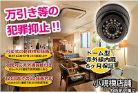防犯カメラsdカード録画家庭用ドーム型防犯カメラ【CK-08】