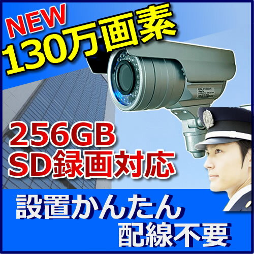 防犯カメラ 屋外 SDカード録画 130万画素 家庭用 防犯カメラ MTW-SD02AHD(720P)