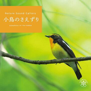 小鳥のさえずりヒーリング CD BGM 音楽 癒し ミュージック カッコウ ウグイス ホトトギス エナガ 自然音 朝 目覚まし 高原 野鳥 ギフト プレゼント (試聴できます)送料無料 曲 イージーリスニング