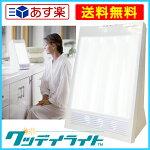 「グッデイライト」太陽光ライトセラピー光療法マイナスイオン10,000ルクス疲労不眠改善