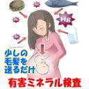 「水銀から赤ちゃんを守る」『妊婦用 有害ミネラル検査』「有害金属6元素検査」「胎児へのリス...