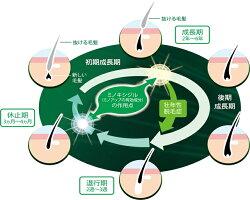 【第1類医薬品】ミノアップminoUP東和薬品発毛育毛剤60mlミノキシジル5%配合