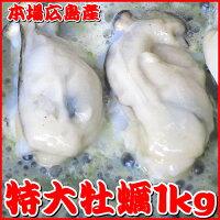 【送料無料】広島牡蠣・特大サイズ1kg1kg中に30粒前後入ってボリューム満点(カキ、かき)