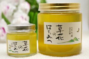 【非加熱・抗生物質不使用】大和・月ヶ瀬の完熟蜂蜜『草花のはちみつ』600g