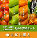 【無肥料・自然栽培】旬のお野菜・果物のお任せセット(Mセット