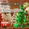 【マジッククリスマスツリー 5個セット】マジックツリー、マジック クリスマスツリー、クリスマス ツリー、クリスマスツリー、マジック クリスマス ツリー